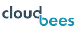 Cloudbee Gunnison Technology Partner